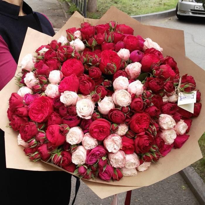 101 пионовидная роза с упаковкой R874