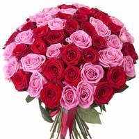 Букет 51 красно-розовая роза с лентами R309