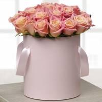 21 кремовая роза в коробке R147