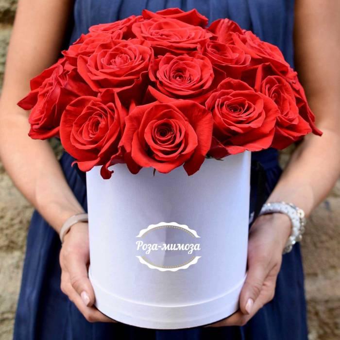 19 красных роз в коробке R017