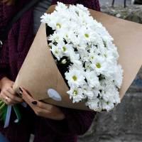 Букет 9 веток хризантемы R003