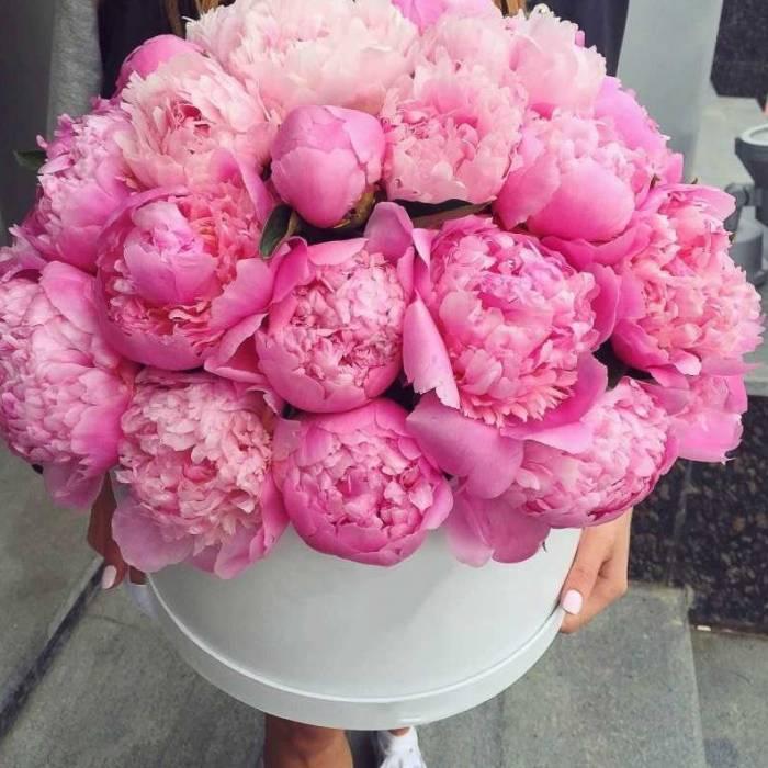 29 ярко-розовых пионов в коробке R008